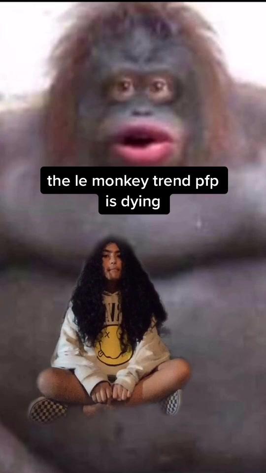 What Is The Tiktok Monkey Pfp Quora