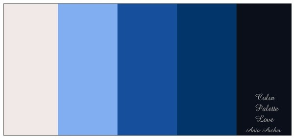 Navy Blue Color Palettes