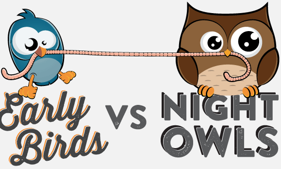 Image result for early bird night owl