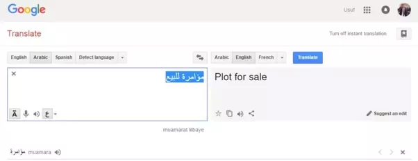 Free Tip: Any word that has more than one meaning may render google  translate useless.