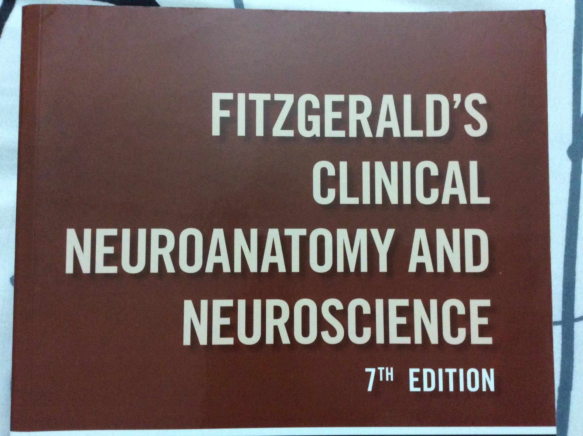 What Is The Best Book On Neuroanatomy Quora