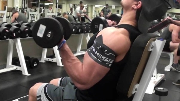 I am unable to gain muscle mass in my arms (biceps, triceps ...