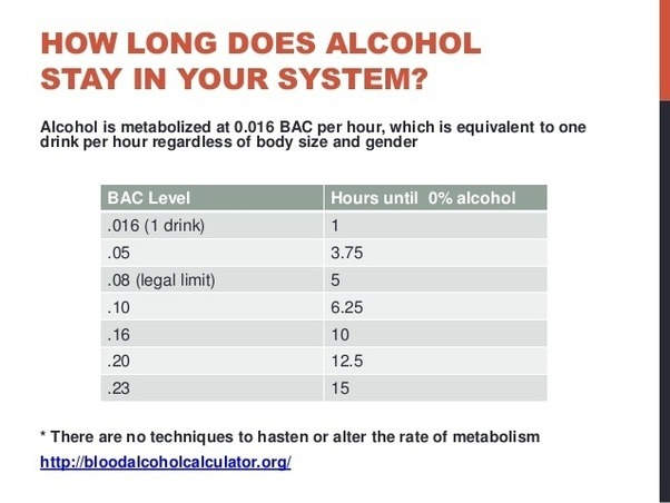 For How Long Does Beer Stay In Your System How To Avoid