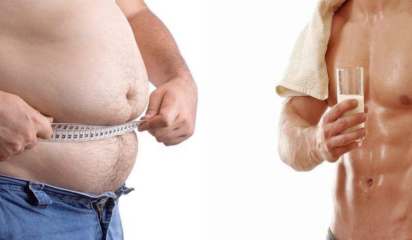 best weight loss workout pdf