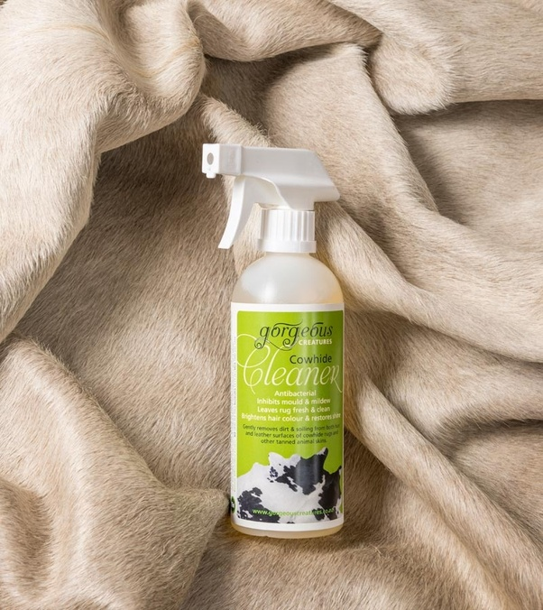 clean dog urine from a cowhide rug