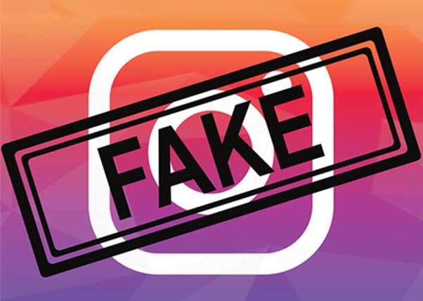 Instagram fake followers