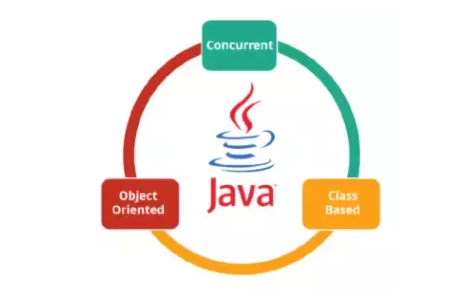 Learn Programming With Us C C plus java PHP Mysql C# ...