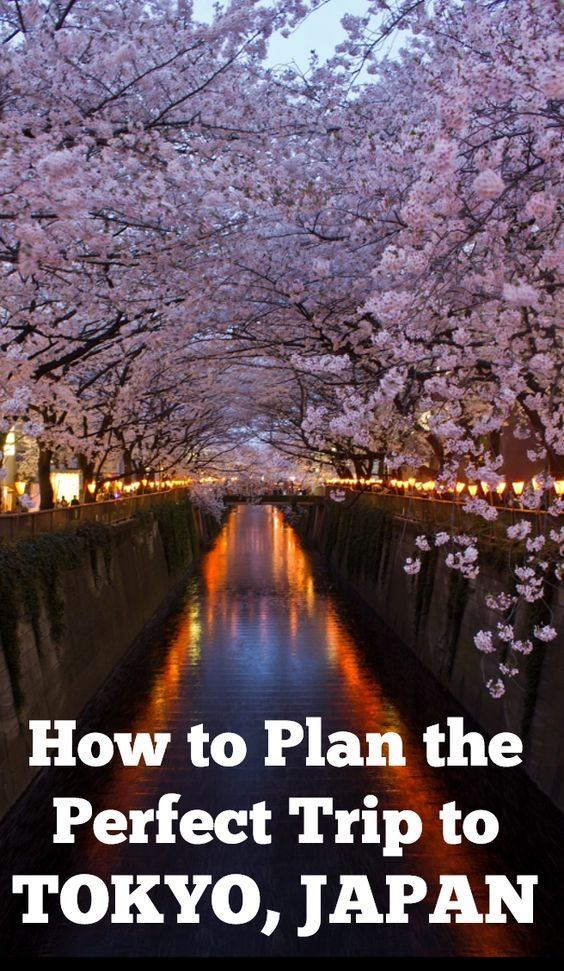 How Much Would It Be For A Trip To Japan From India Quora - How much is a trip to japan