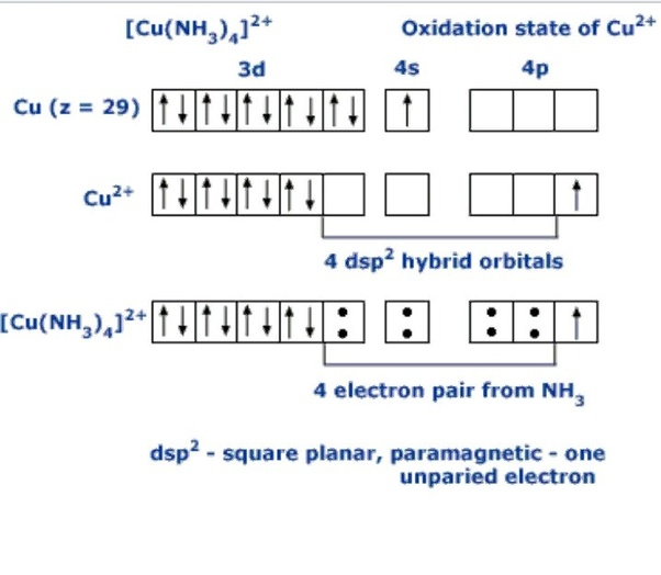 so, there would be a rearrangement of electrons in cu^2+ because of the nh3  ligand (which is a strong one)  and the last electron in the d-orbital  would be
