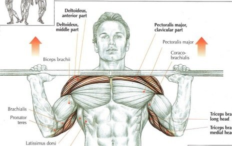 My Shoulders Get Exhausted Before Chest While Doing Chest