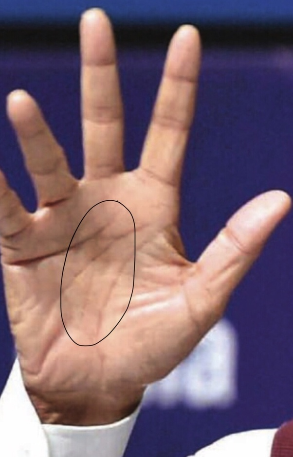 How does a successful person's palm look like? - Quora