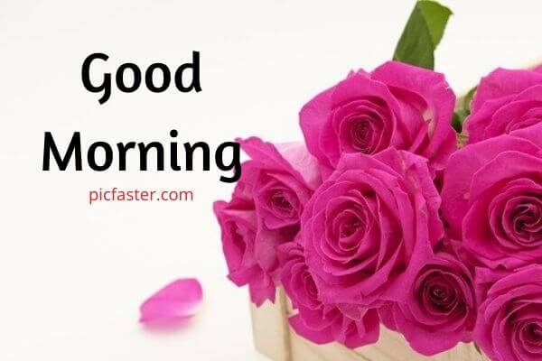What Are The Best Good Morning Quotes Good Morning Wishes Good Morning Greetings Quora