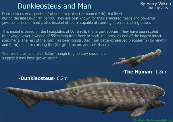 If Mosasaurus Fight Against Dunkleosteus One On One Who