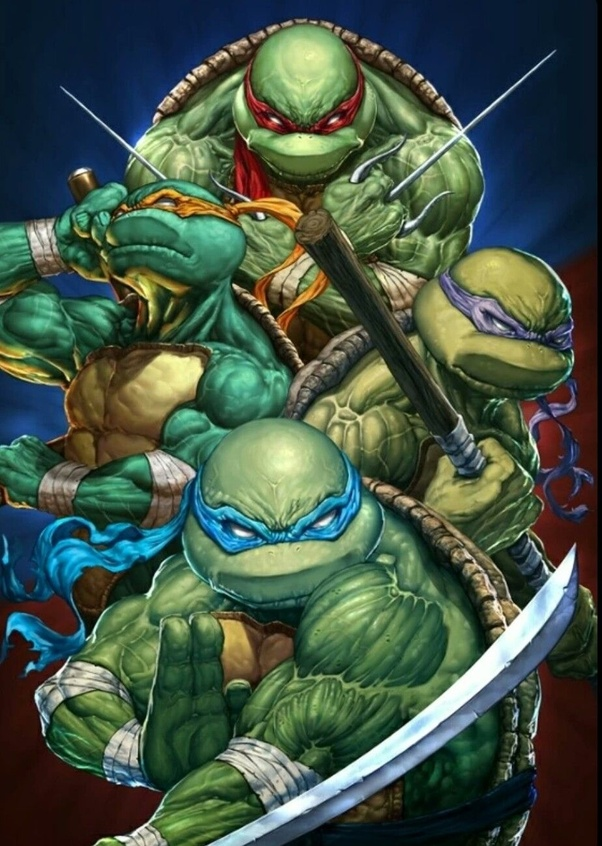 Which Of The Ninja Turtles Wears Blue Quora