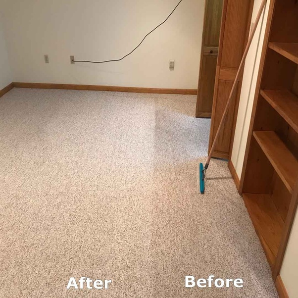 How To Remove Basement Carpet Odors