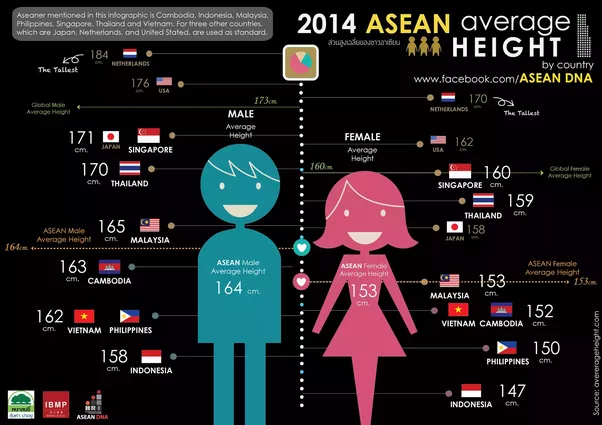 Average male female height-1584