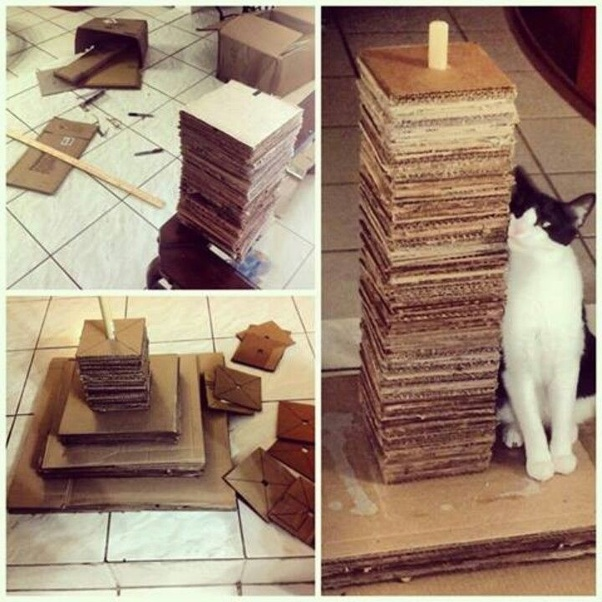 What Are Some Easy Ways To Make A Diy Cat Tree Quora