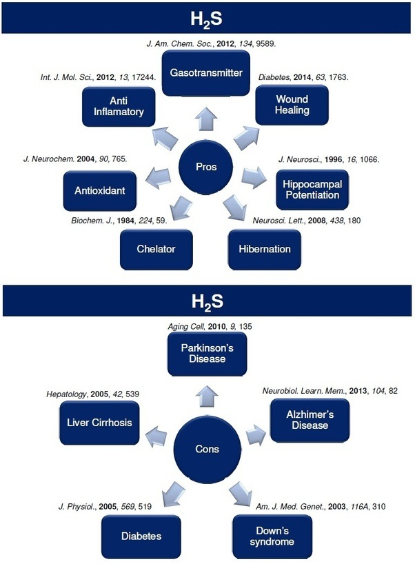 What Is H2s Quora