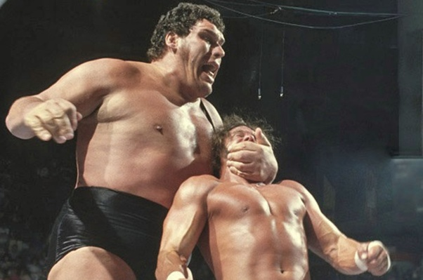 Image result for andre the giant dominance