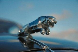 Jaguar Models Have Sported The Famous Chrome Plated Leaping Jaguar,  Traditionally Forming Part Of The Radiator Cap, Also Known As U201cThe Leaperu201d.