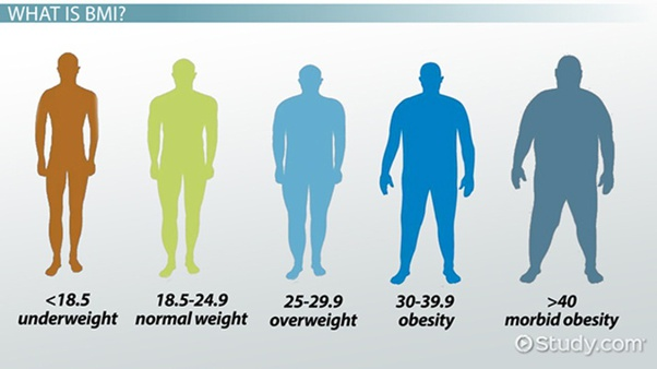 How to Calculate BMI? 7 Brilliant Interesting Amazing ways 9