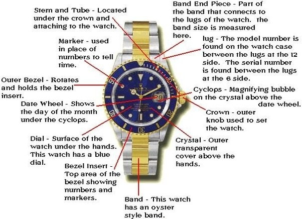 What are the different parts of a watch? - Quora