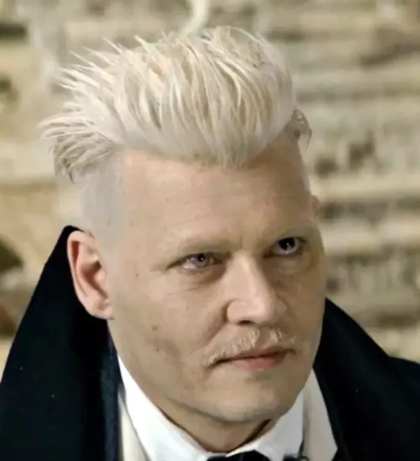 What is the significance of grindelwald 39 s eyes one eye for Grindelwald s wand