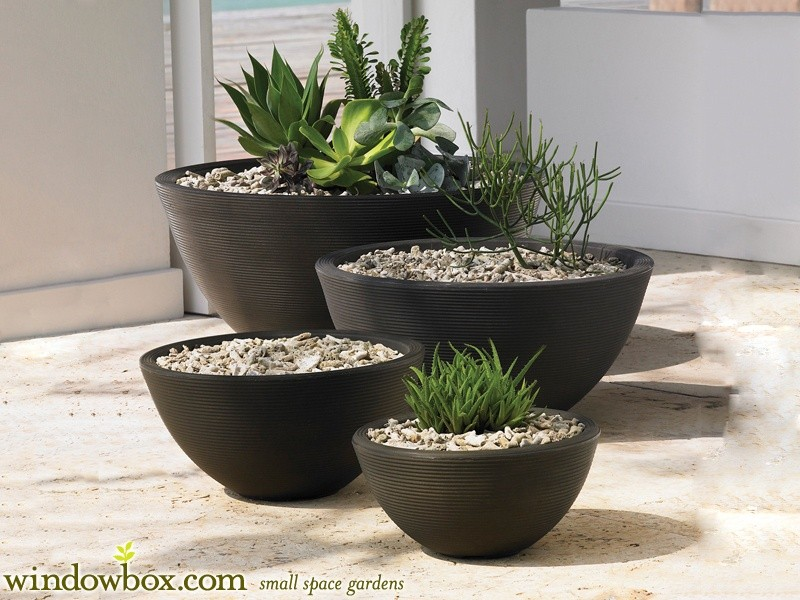 Where Can I Buy Best Planters Pots Quora