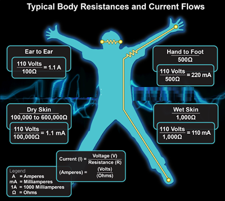 What is the electrical resistance of human body quora within the body the tissues with the greatest resistance are bone and fat nerves and muscle have the least resistance that said the majority of the greentooth Gallery