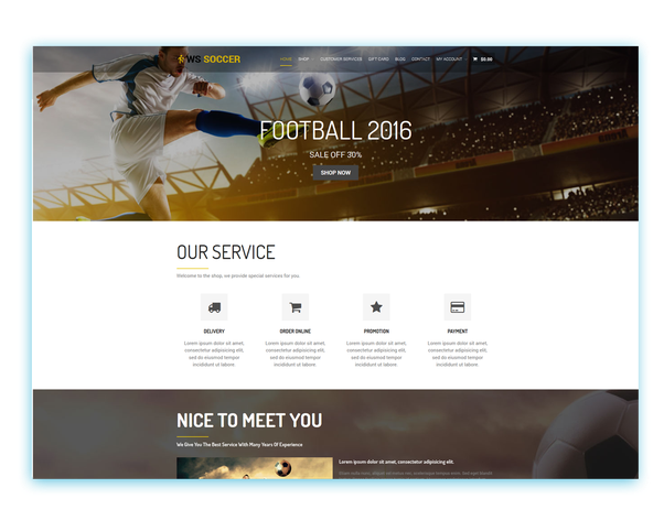 What are the best WordPress themes for sports sites? - Quora