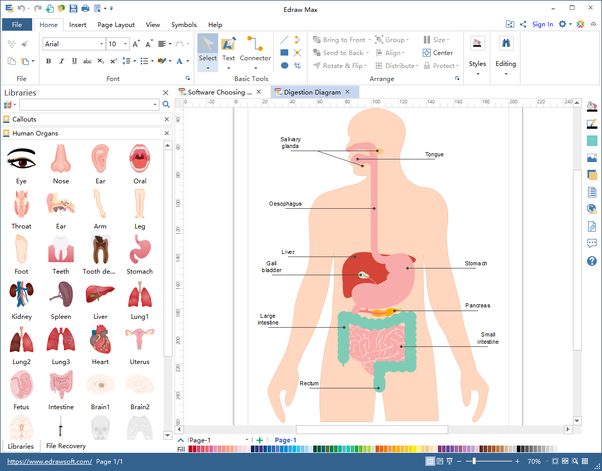 Is there any software that can model a free body diagram quora popular features of human organs diagram software ccuart Images