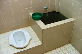 Different types of toilets image collections image