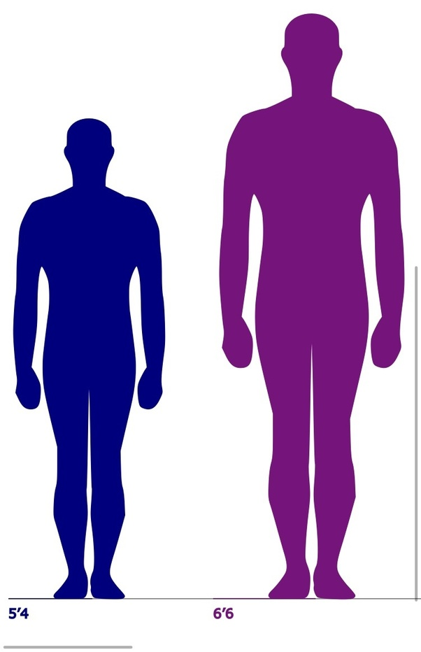 What Does A 5 Ft 4 Person Look Like Next To A 6 Ft 6 Person