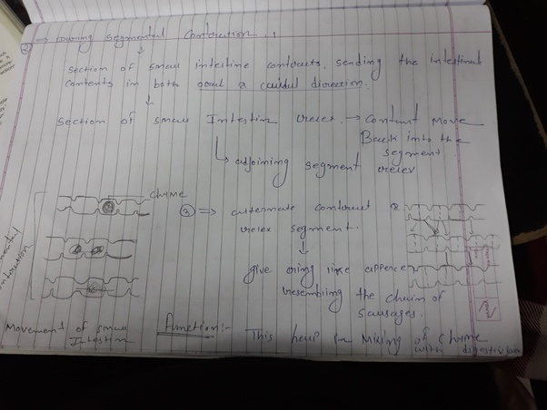 Can someone help me with helpful PDF notes for MBBS years