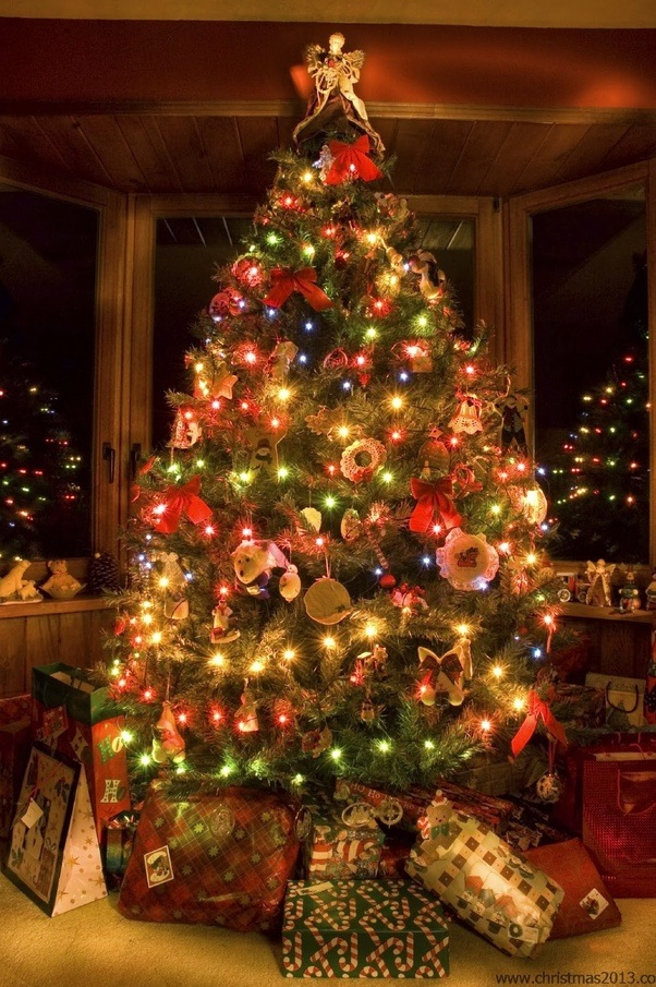 christmas tree is a symbol of christianity and hope it is a very old custom of decorating trees and also used to celebrate winter festival from the past