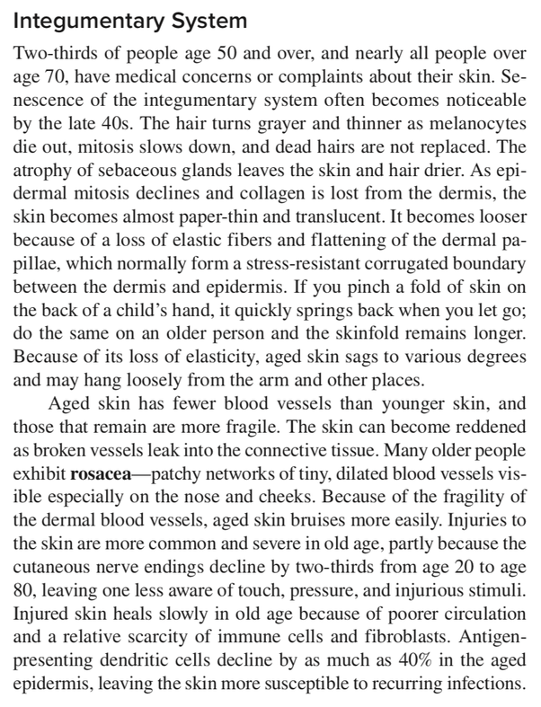In detail, what causes the skin to age? - Quora
