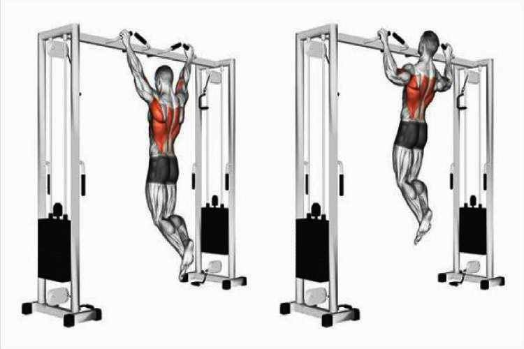 Pull-ups or chin-ups, back workout for a beginner
