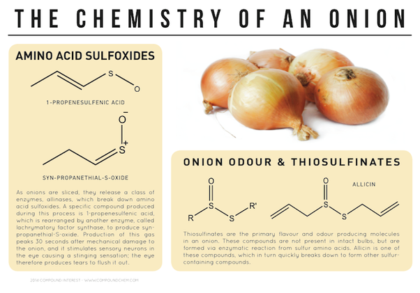 what is the best method to remove the smell of onions from