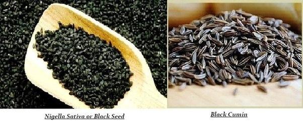 Where can I find black cumin seeds? - Quora