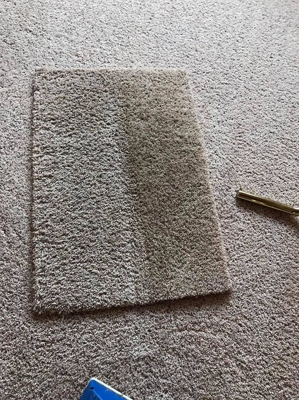 How Do Carpet Cleaners Work Quora
