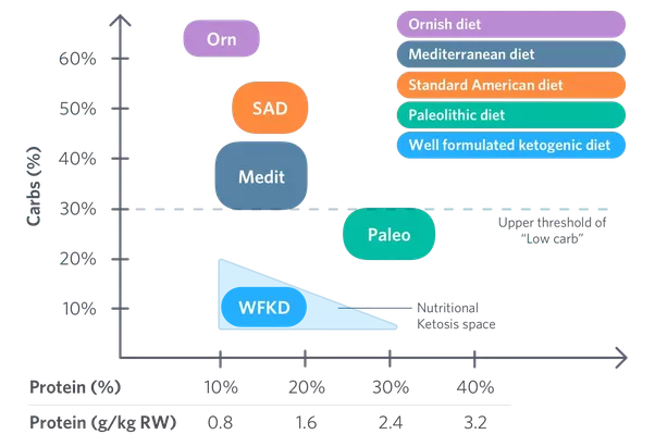 What are the differences between the Ketogenic, Atkins, and Paleo diets? - Quora