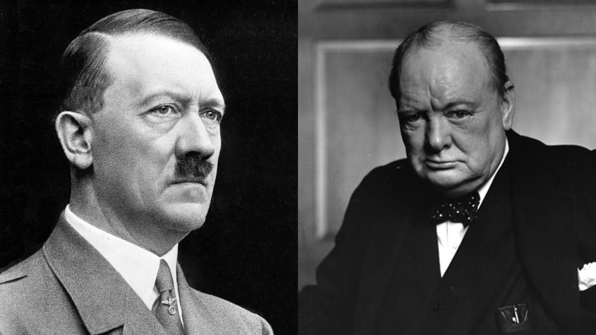 how were hitlers stalins laws goals & philosophies similar