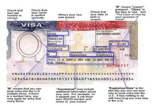 Include Visa Status In Resume