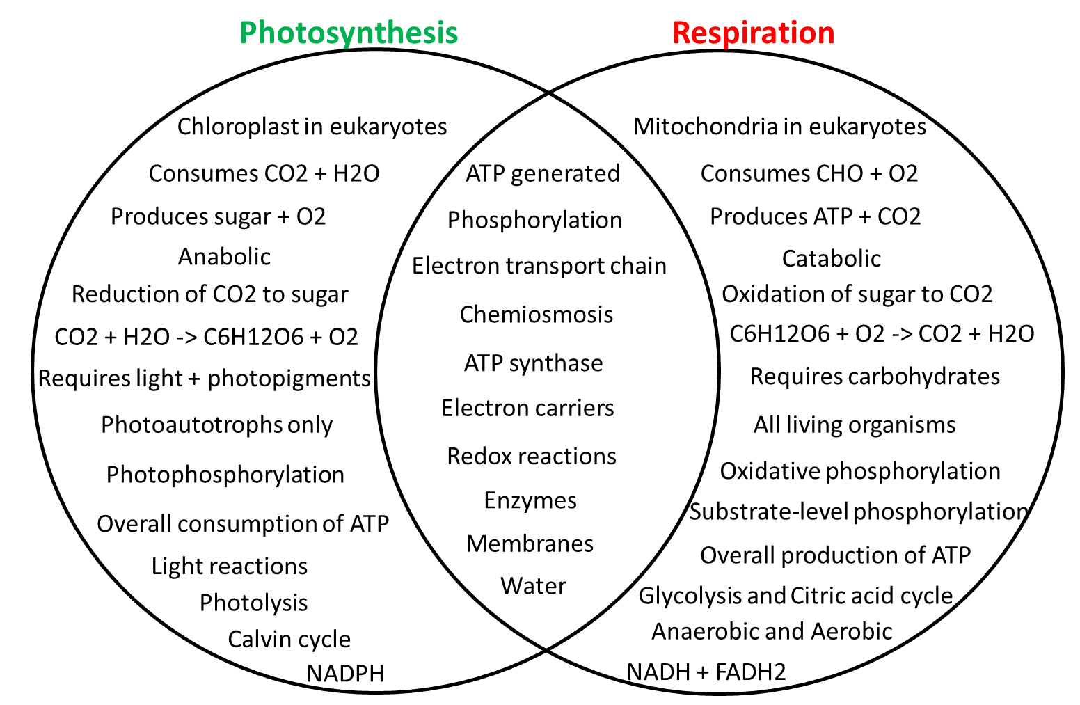 Photosynthesis vs. Cellular respiration