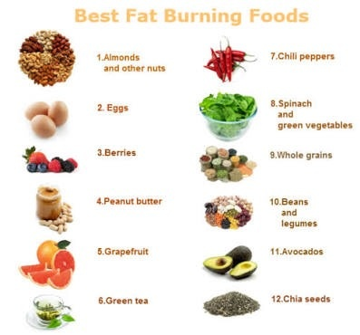 reducing body fat diet