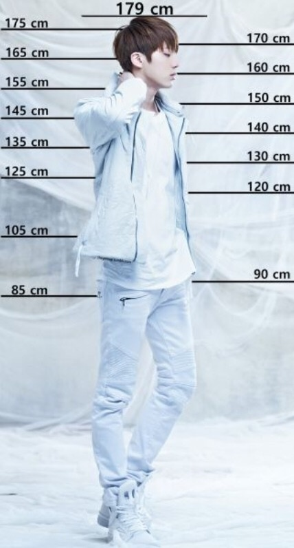 Is suga tall how Sugar Maple