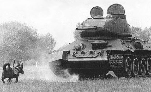 What tanks use diesel engines, and why? - Quora
