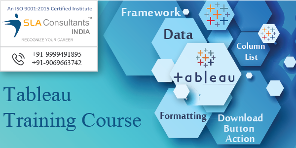 Which is the best place to learn professional Tableau