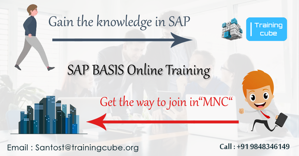 Which is the best institute to learn SAP Basis online