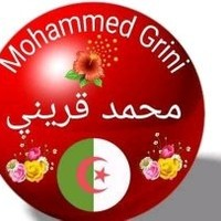 Profile picture for Mohammed Grini